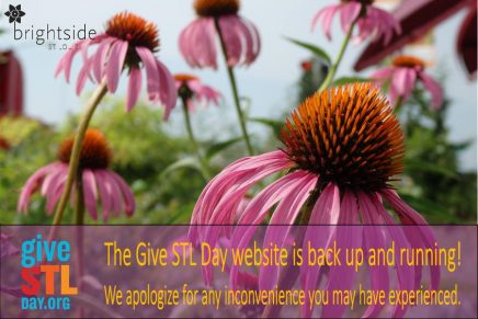 2016 - today is give stl day site up